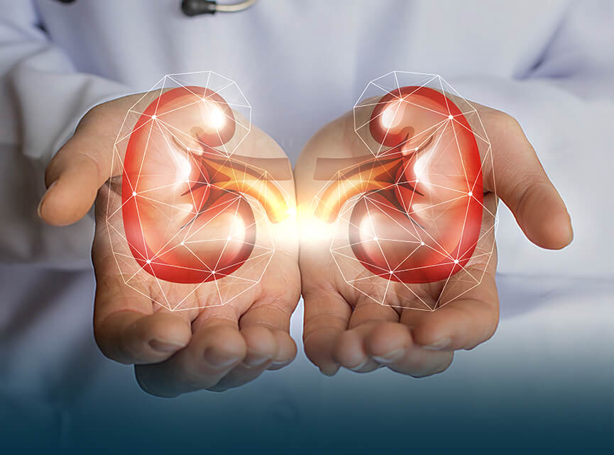 Urology, Andrology & Transplant Surgery Hospital in India: Best
