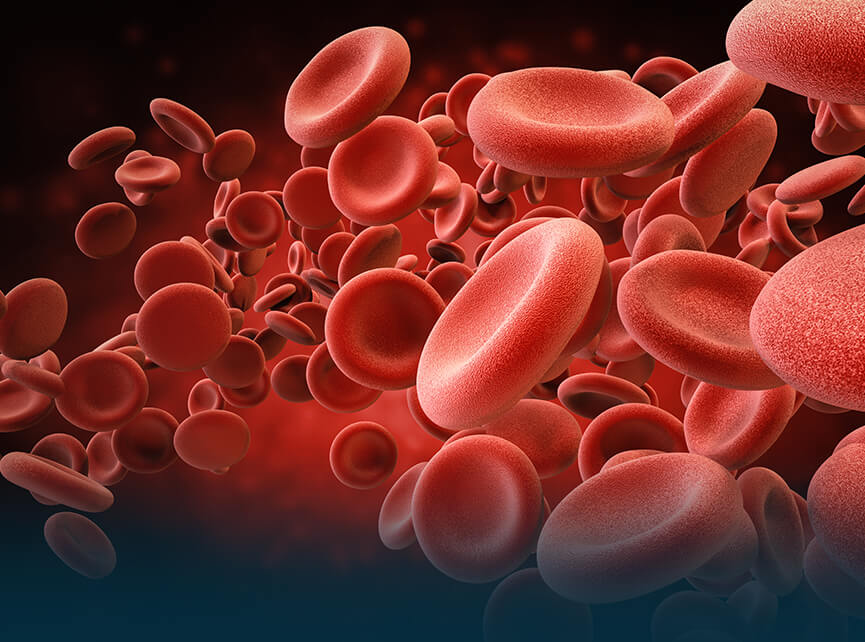 Blood Disorders/ Haematology Hospital in India: Best Blood
